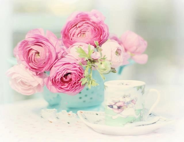 From group  Beautiful Garden ೋღღೋ Beautiful Flowers   https://www.facebook.com/pages/Beautiful-Garden-%E0%B3%8B%E1%83%A6%E1%83%A6%E0%B3%8B-Beautiful-Flowers/180001555391493