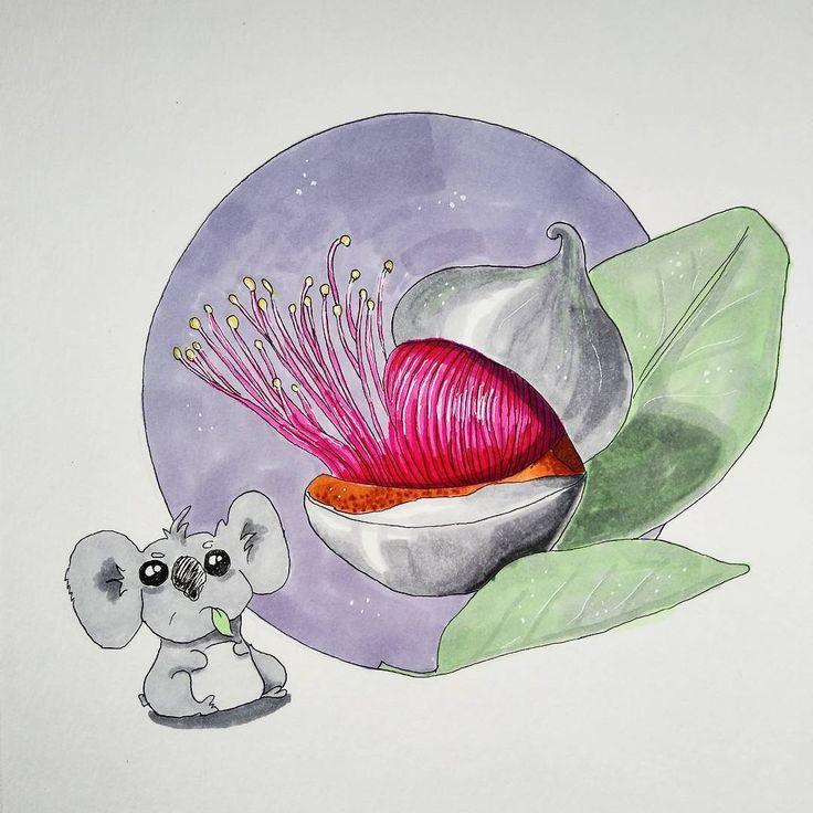 Koala & eucalyptus  — Olga (@olkapolkaa) в Instagram