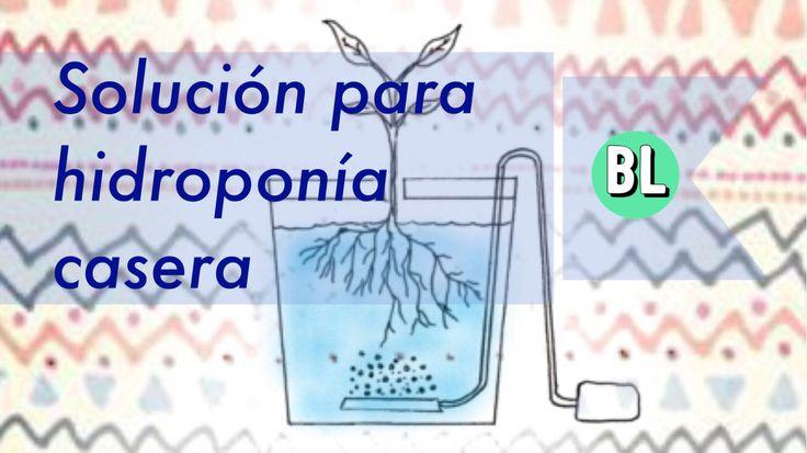 Solución para hidroponía casera