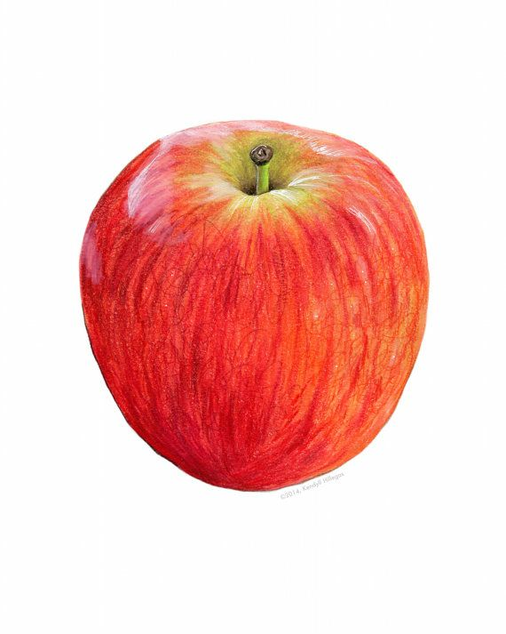 Red Apple Illustration // Watercolor and Mixed Media // Food art, botanical illustration