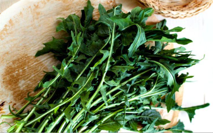 17 Best ideas about Dandelion Salad on Pinterest | Dandelion recipes ...