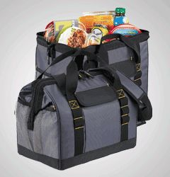 24-Can Cooler Bag that looks like a tool box - very clever!