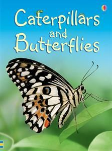 AR Level/Points: 3.6/0.5  How do caterpillars turn into butterflies? What do butterflies eat? What is a moth? In this book you'll find the answers and lots more about these fascinating insects.  Caterpillars and Butterflies is part of an exciting series of books for children who are beginning to read on their own. The easy-to-read text has been specially written with the help of a reading expert.