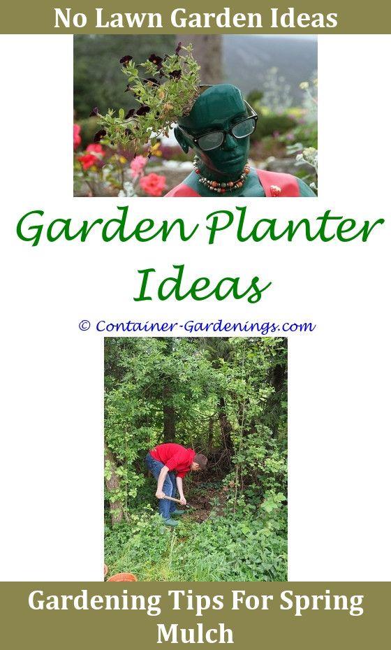 Listotic Front Garden Fountain Ideas Ideas For School Garden Club