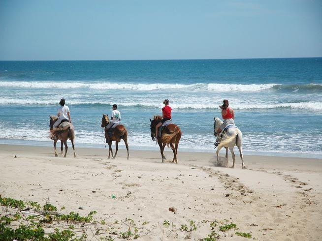 Enjoy horse riding!
