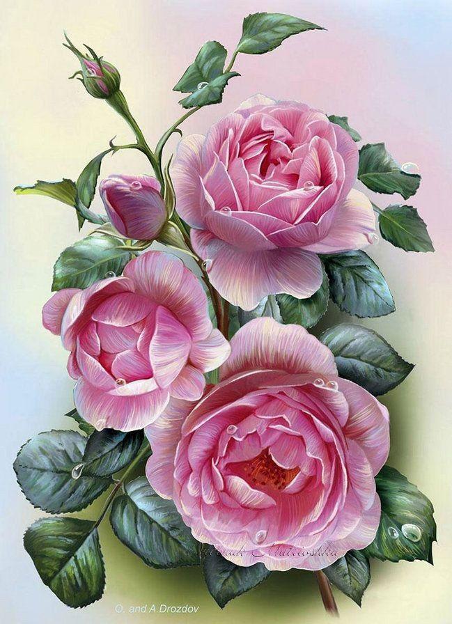 Ические открытки с позами, цветов