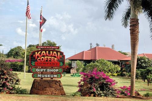 Kauai Coffee Company and Coffee Farm on the Hawaiian Island of Kauai