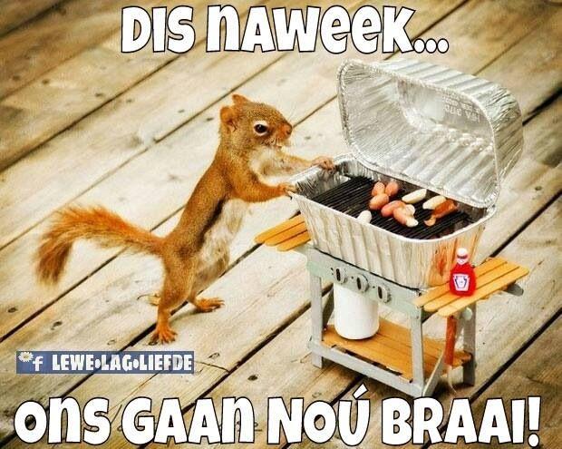 Dis naweek...ons gaan nou braai! #Afrikaans #humor #grappe #snaaks