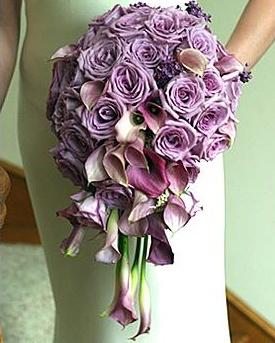 Bouquet Bridal: purple rosesCascading Bouquets, Bridal Bouquets, Lavender Roses, Bouquets Bridal, Wedding Bouquets, Purple Rose, Bouquets Ideas, Wedding Flower, Lavender Bouquets