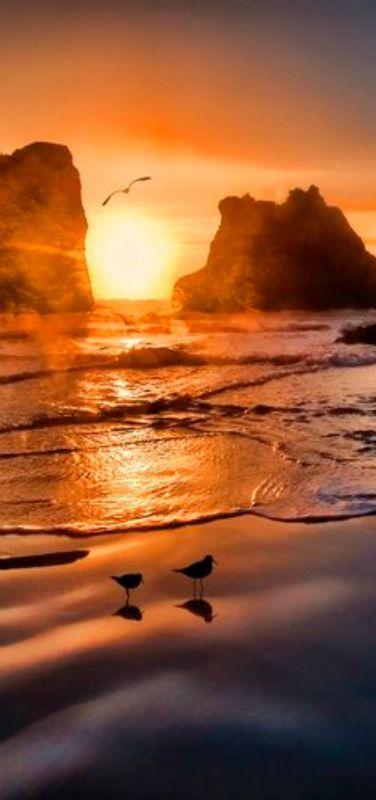 Bandon Beach Sunset | Sea Stacks | by Mark Lissick