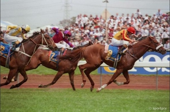 Kingston Rule 1990 Melbourne Cup