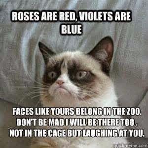 A Grumpy Cat poem on Valentines Day. LOL Very nice! ~Me  #GrumpyCat #Valentines #poetry