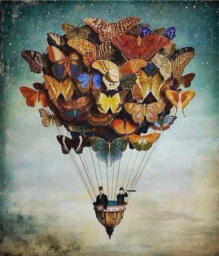 Kelebek Balonu