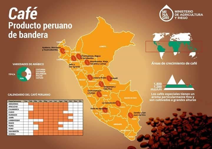 Conoce más del café Peruano! Gracias al Ministerio de Producción y Riego (MINAGRI) que nos permite tener estos datos!