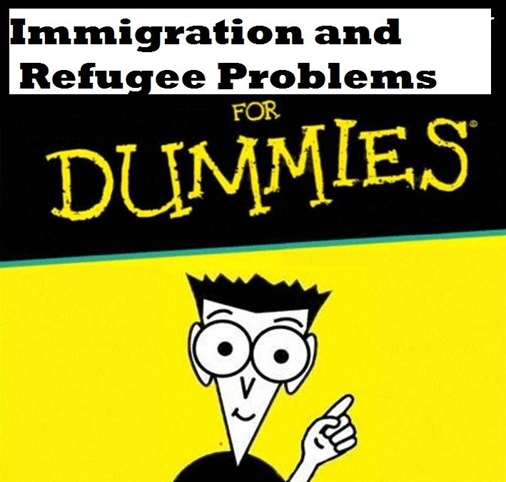 For the Confused Media: A Dummy's Guide to Immigration and Refugee Problems https://www.pinterest.com/torasso1/politically-incorrect-politics/