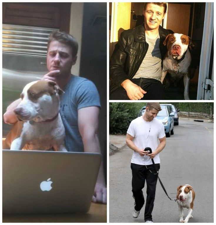 Photo of Ben McKenzie & his  Dog Oscar
