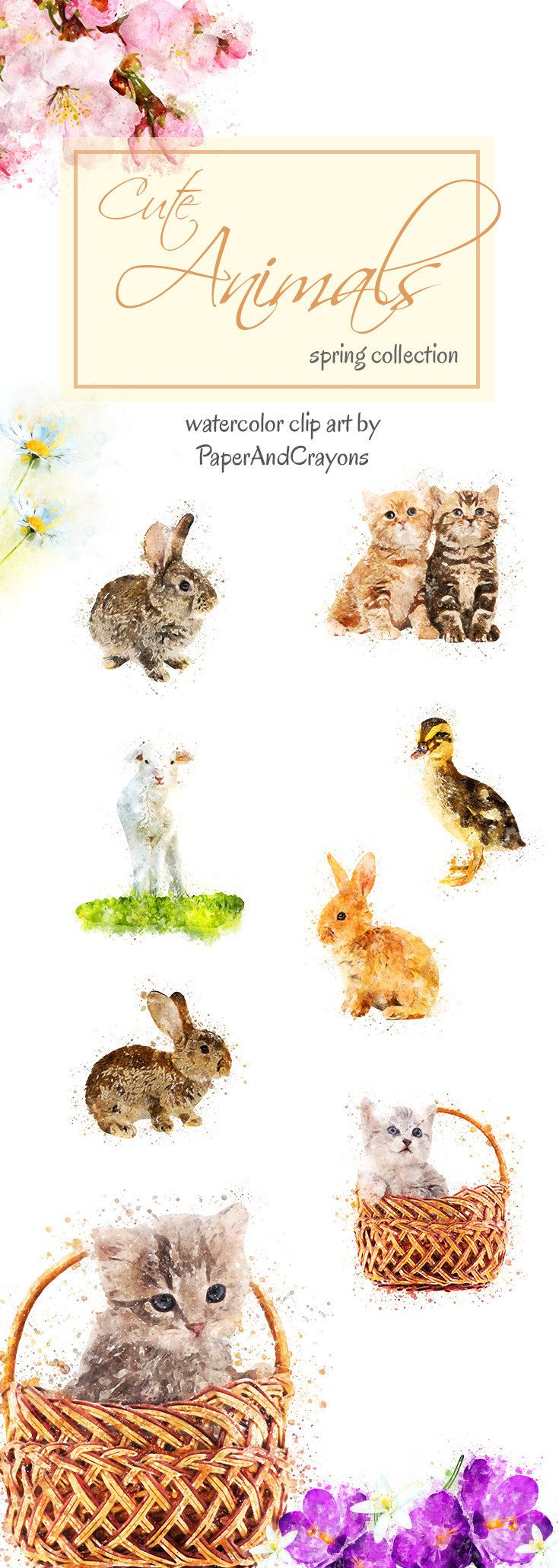 Spring Watercolor Animals, Cat Clipart, Rabbit Clip Art, Animal Graphics, Easter Bunny, Kitty, Flowers, PaperAndCrayons, Digital Download