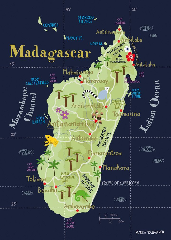 Illustrated Map of Madagascar Limited Edition Print A3 / 11.69 x 16.54 Fine Art Illustration Digital Print Africa Island Map