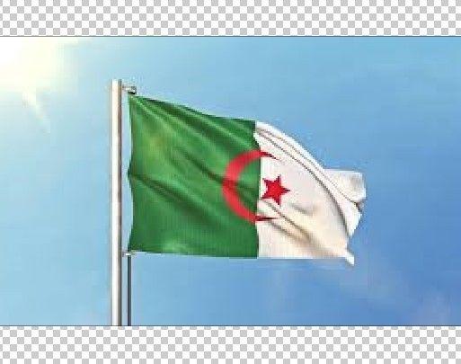 ALGERIA ALGERIAN COUNTRY SOCCER BIG WAVING POLE FLAG ALGERIE BEAU GRAND DRAPEAU #Algeria #algerie #Algerian #algerianflag