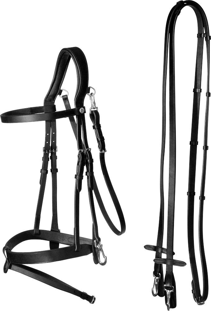 Kjøp rideklær, heste- og hundeutstyr på nett eller i butikk! Hööks Hestesport er Skandinavias ledende foretak innen hestesportsutstyr og har et bredt sortiment