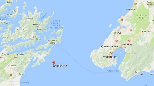 A twelve-year-old Auckland athlete has become the youngest female to swim the Cook Strait. Just a couple of months shy of her 13th birthday, Caitlin O'Reilly swam ashore after 7 hours 19 minutes 15 seconds just north of Perano Head in the Marlborough Sounds, just after 9.30pm on Friday to roars of approval from her support team.