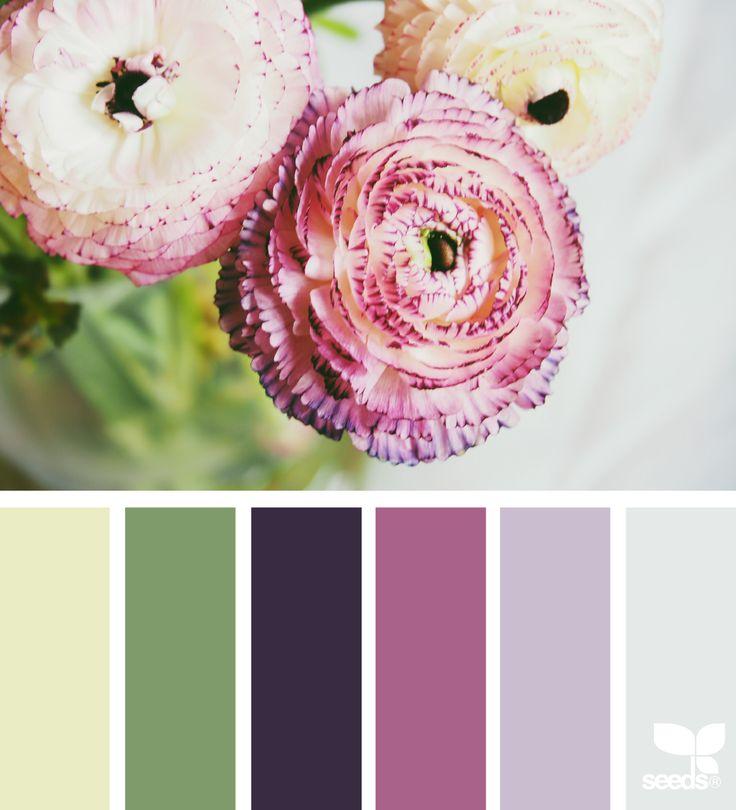 Color Flora - https://www.design-seeds.com/in-nature/flora/color-flora-15