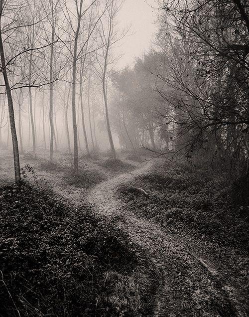 Tell me again #6 Brouillard sur la plaine de la Garonne / France / Lot et Garonne ©Alain Etchepare Edition limitée à 10 40x50cm Giclée sur H...