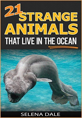 21 Strange Animals That Live In The Ocean - Extraordinary Animal Photos & Facinating Fun Facts For Kids: Book 3 (Weird & Wonderful Animals) 1, Selena Dale - Amazon.com