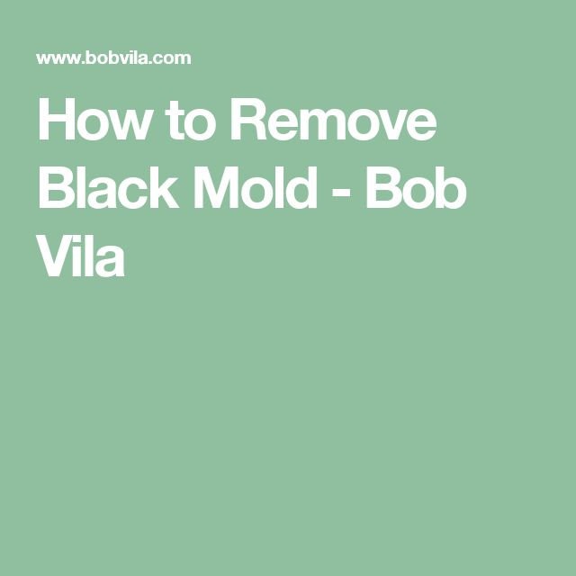 How to Remove Black Mold - Bob Vila