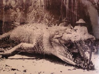 Supposedly this is the biggest croc ever found, at 8.6m (28ft). Shot by a hunter in Queensland, Australia in 1957.