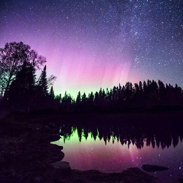 Réserve de ciel étoilé Preserve, Parc provincial Mont-Carleton | Magnifique photographie naturelle du Nouveau-Brunswick, Canada | Photo : @jordy.smits / Instagram