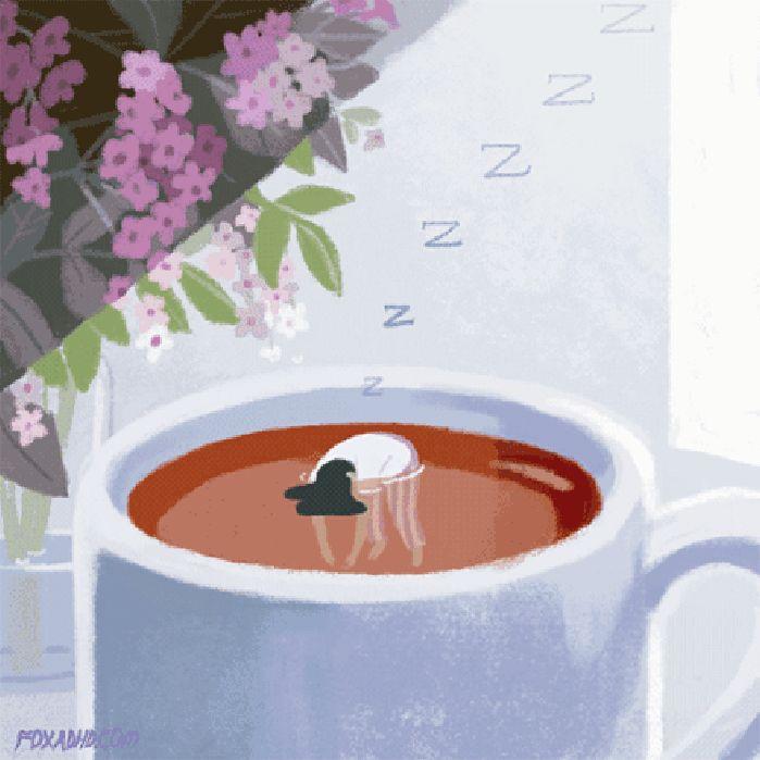 下午茶时间睡着了。
