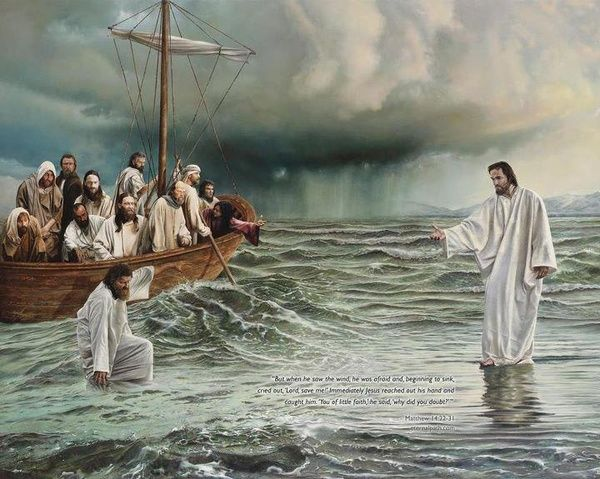 """Matthew 14:30-31 ESV But when he saw the wind, he was afraid, and beginning to sink he cried out, """"Lord, save me."""" Jesus immediately reached out his hand and took hold of him, saying to him, """"O you of little faith, why did you doubt?"""""""