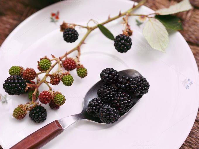 Blackberry mood by Life Morning Photography on Creative Market