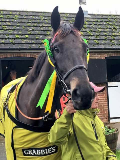 2015 Grand National winner Many Clouds