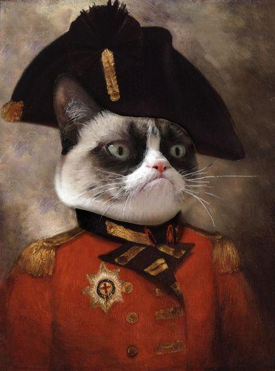 Angry cat. Grumpy General Cat.  Art Print