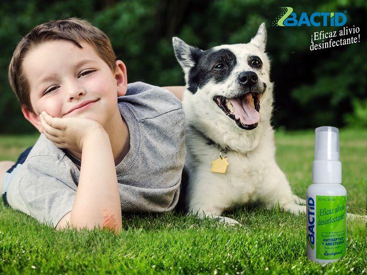 Si deseas desinfectar heridas y aliviar el ardor o la picazón, usa Bactid en gel o en spray.