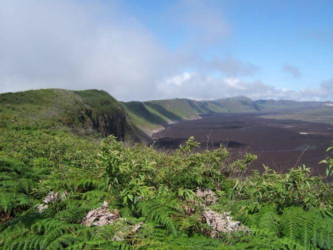 Isla Isabela, las islas Galapagos, Ecuador