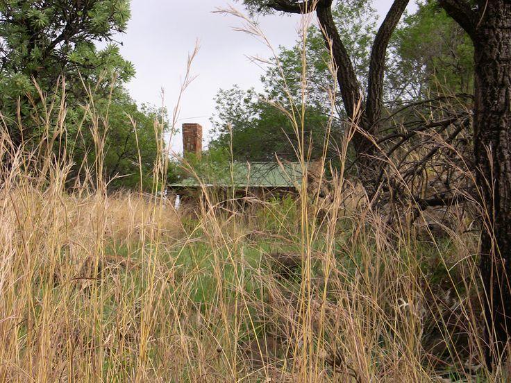 Tonteldoos area, Mpumalanga, South Africa.
