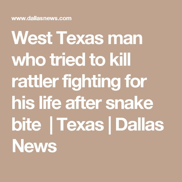 West Texas man who tried to kill rattler fighting for his life after snake bite | Texas | Dallas News