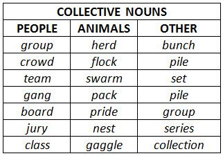 subject verb agreement collective nouns worksheet pdf