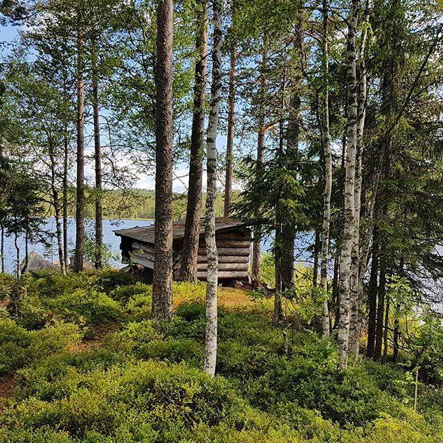 Flott gapahuk ved Kalsjøen.  Skal visst nok være fisk der. Men ingen  beit på den dagen vi var der. #finnskogen #fisketur #fishing #whatgetsyououtdoors #norwegiannature  #beautifulnorway #visitnorway #mittnorge #jaktfiskeogfriluftsliv #ig_naturelovers #ig_naturephoto #ig_naturelovers  #mittnorge #mittfriluftsliv #liveterbestute #jfof #villmarksliv #utno #utpåtur #nature #skittfiske #jaktogfiske #enjoyoutdoors #gapahu #shelter  #utpåtur #skogtur #hiking #vigirdegnaturen #villmarksliv…