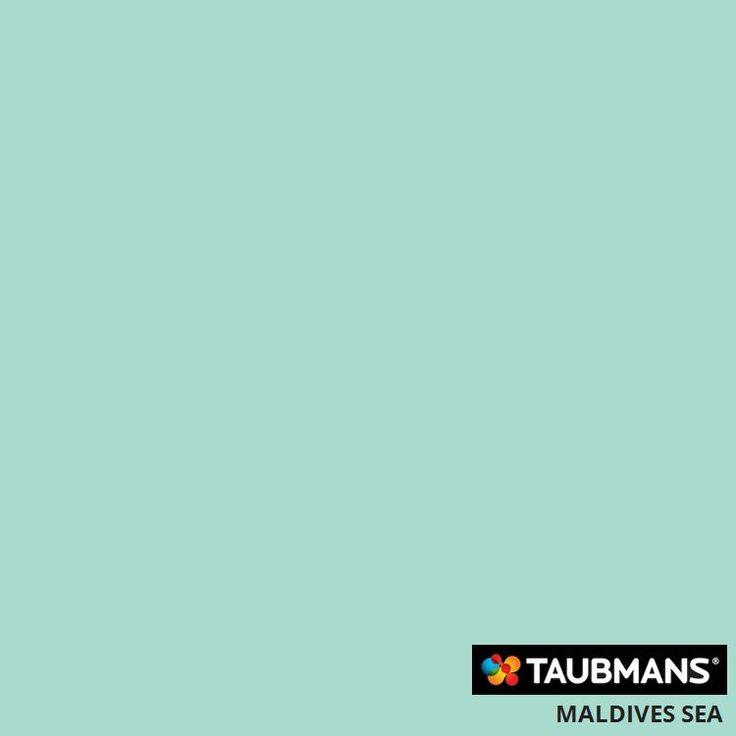#Taubmanscolour #maldivessea