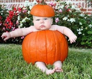 adorably grumpy lil pumpkin