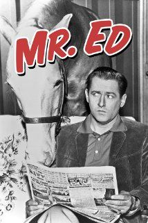 "Mister Ed (1958) t.v. show.  ""A horse is a horse, of course, of course"".  This show was already in reruns when I began to watch it. I loved Mr Ed and Wilbur. Ed always had the coolest lines. Just once I would have liked for someone else to hear him. At about 8 years old, I got a Mr Ed puppet for Christmas that when you pulled the string, he talked. I loved that toy!"
