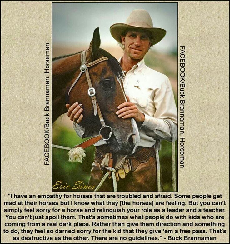 There's no greater cowboy than Buck Brannaman.