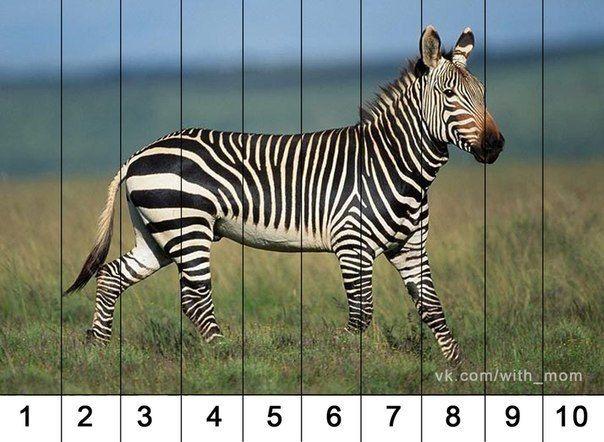 d63aacef9297b412f763bb9ca451c8d4.jpg (604×442)
