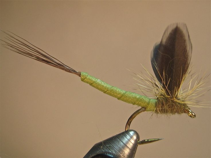55 best images about mayflies on pinterest parachutes for Best salmon fishing lures