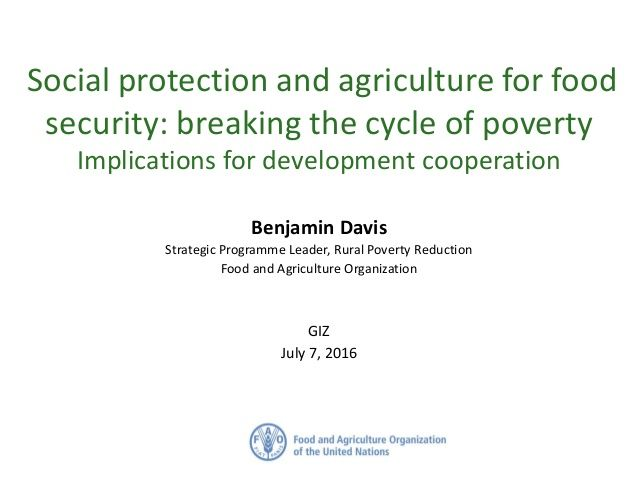 Social protection and agriculture for food security: breaking the cycle of poverty Implications for development cooperatio...