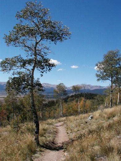 Kenosha Mountain Views
